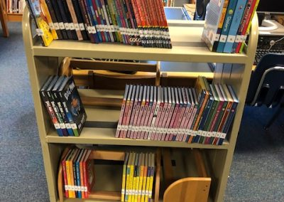 Kerhonkson Elementary Library Grant for New Graphic Novels